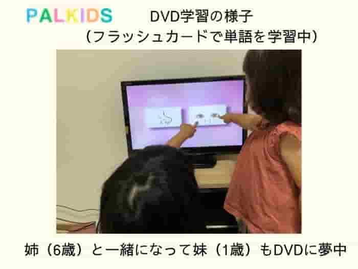 七田式の英語教材セブンプラスbilingualは音声ペン(タッチペン)、オンライン英会話での学習パルキッズはオンラインレッスンとDVDか学習二つの教材を比較